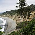 Above Agate Beach by Michael Picco