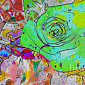 Abstract Childlike Rose by Barbara Griffin
