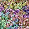 Abstract Colors Pale by Debbie Portwood