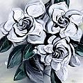 Abstract Gardenias by J Vincent Scarpace