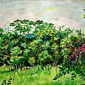 Abstract Landscape 6 by Usha Shantharam