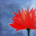 Abstract Lotus by Prachi  Shah