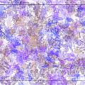 Abstract Purple Splatters by Debbie Portwood