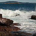 Acadian Shore by Paul Mangold