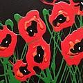 Accidental Poppies On Black by Kelli Perk