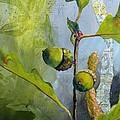 Acorn Duo by Saundra Lane Galloway