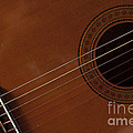 Acoustic Guitar 21 by Alan Look
