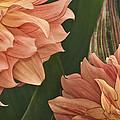 Adalee's Petals by Trish Tritz