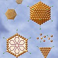 Adenovirus Structure, Artwork by Art For Science