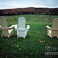 Adirondack Chairs by Mike Nellums