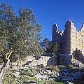 Aegosthena Citadel by Andonis Katanos