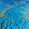 Aerial View Of Coral Formations by Jean-Paul Ferrero