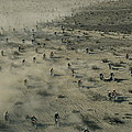 Aerial View Of Hundreds by Walter Meayers Edwards