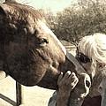 Affectionate Stallion by Regina Arnold