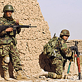 Afghan Soldiers Conduct A Dismounted by Stocktrek Images