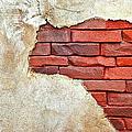 Africa In Bricks by Carolyn Marshall