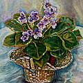 African Violets by Carole Spandau