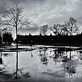 Den Haag After The Rain by Andy Prendy