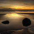 After Tide Out by Svetlana Sewell