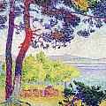 Afternoon At Pardigon by Henri-Edmond Cross