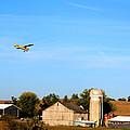 Afternoon Flight by Darlene Bell