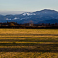 Afternoon Shadows Across A Rogue Valley Farm by Mick Anderson