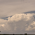 Afternoon Thunderstorm Building Boulder County Co Plains  by James BO Insogna