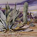Agave And Purple Opuntia by Jean Beck