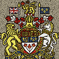 Aged And Cracked Canada Coat Of Arms by David G Paul