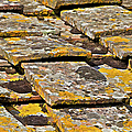 Aged Roof Tiles Of Tuscany by David Letts