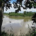 Agusan River Near Ja Pao by Roberto Prusso