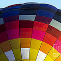 Air Balloon 1554 by Terri Winkler