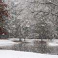 Alabama Winter Wonderland by Kathy Clark