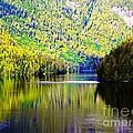 Alaskan Reflection by Tisha Clinkenbeard