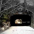 Albany Covered Bridge  by Marie Jamieson
