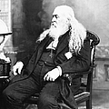 Albert Pike (1809-1891) by Granger