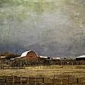 Alberta Farm Land by Diane Dugas