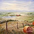 Alberta Foothills by Mohamed Hirji