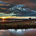 Albufera Rice. Valencia. Spain by Juan Carlos Ferro Duque