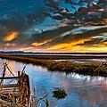 Albufera's Channel. Valencia. Spain by Juan Carlos Ferro Duque