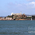 Alcatraz Island In San Francisco California . South Side . 7d14288 by Wingsdomain Art and Photography