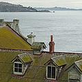 Alcatraz View by Suzanne Gaff