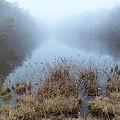 Alcotts Pond In Fog by Steve Gravano