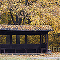 Alcove In The Autumn Park by Michal Boubin