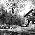Aldergrove Farmhouse by Randy Harris