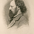 Alfred, Lord Tennyson, English Poet by Photo Researchers