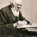 Alfred Russel Wallace, Welsh Naturalist by Science Source