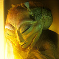 Alien by Detlev Van Ravenswaay