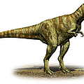 Alioramus Remotus, A Prehistoric Era by Sergey Krasovskiy