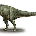 Allosaurus Fragilis, A Prehistoric Era by Sergey Krasovskiy